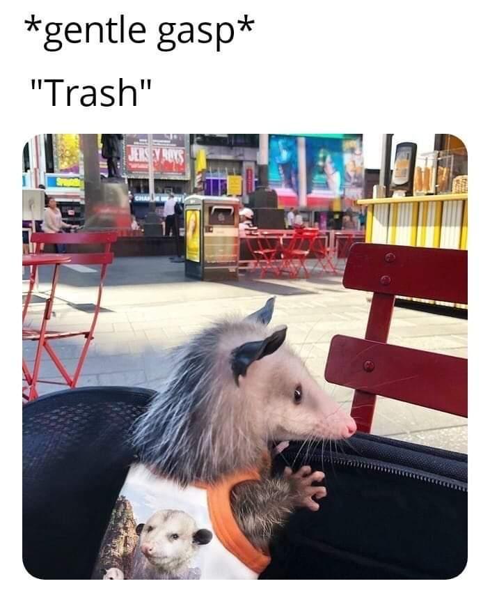 Current fave meme